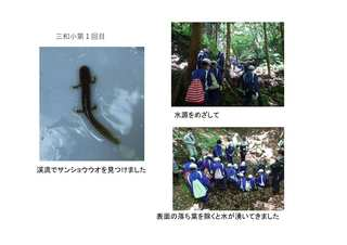 miwa1-2.jpg